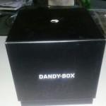 Dandy box avril : D comme déclin