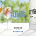 Cocktail Time cannois de Belvedere Vodka